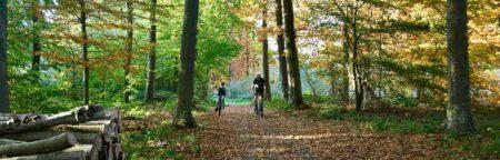 topbillede-cykeltur-i-naturen